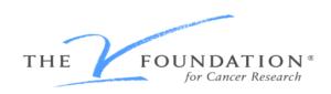 the-jimmy-v-foundation